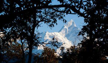 130218_Nepal_Pokhara_Stupa_Sunrise_104